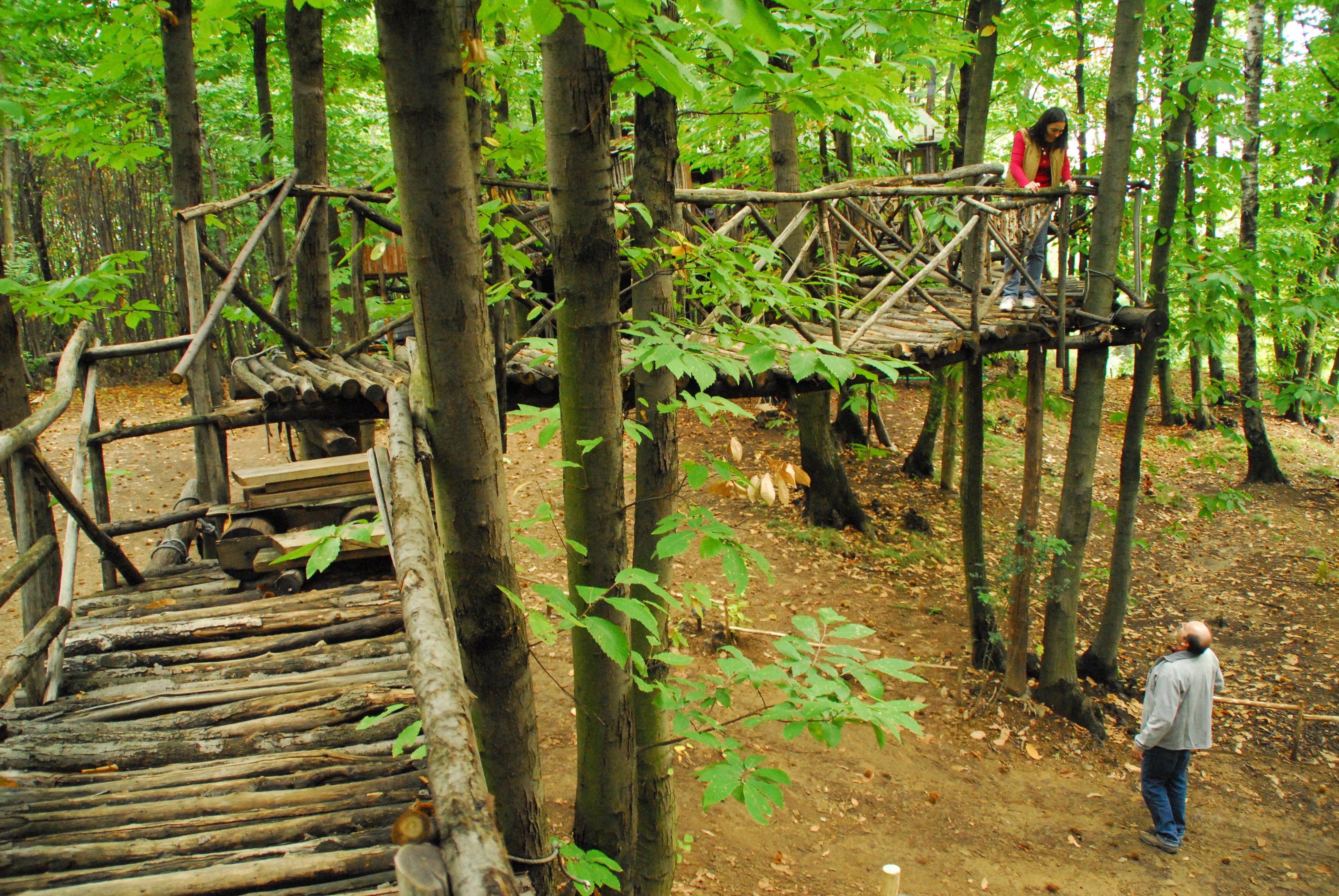 Gli uomini che vivono sugli alberi storie credibili for Piccolo cottage che vive