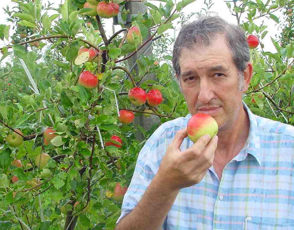 Storia di un biosogno storie credibili for Quando piantare alberi da frutto