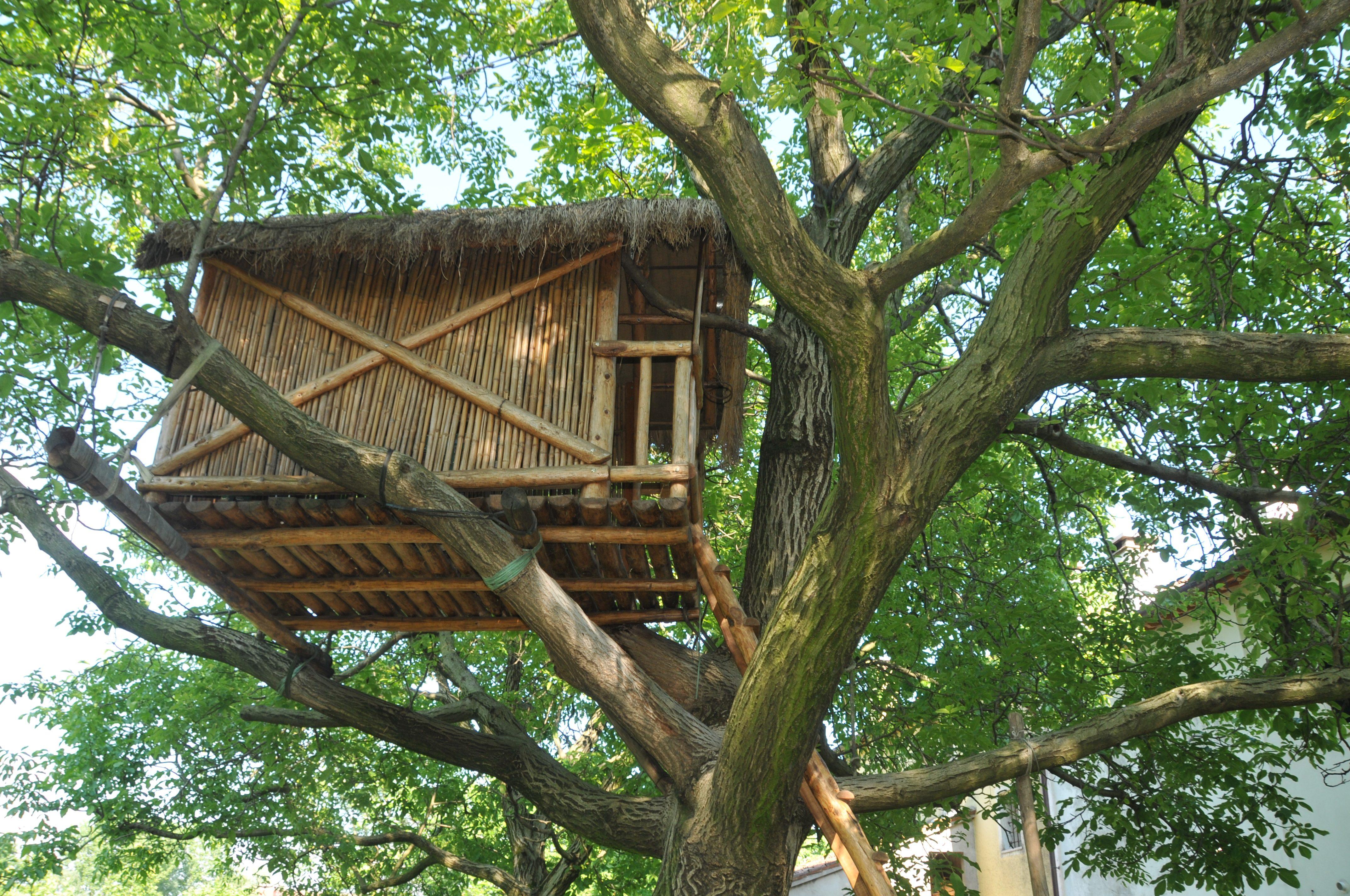 Il contadino di labirinti storie credibili - Costruire una casa sull albero ...
